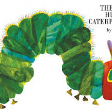 Hungry catrepillar