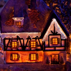 House in winter decoration 199644